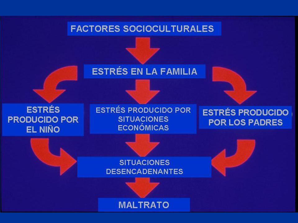 Situaciones desencadenantes Disciplina y Castigo Argumentos/conflictos familiares Abuso de sustancias (drogas/alcohol) Problemas agudos en el medio ambiente
