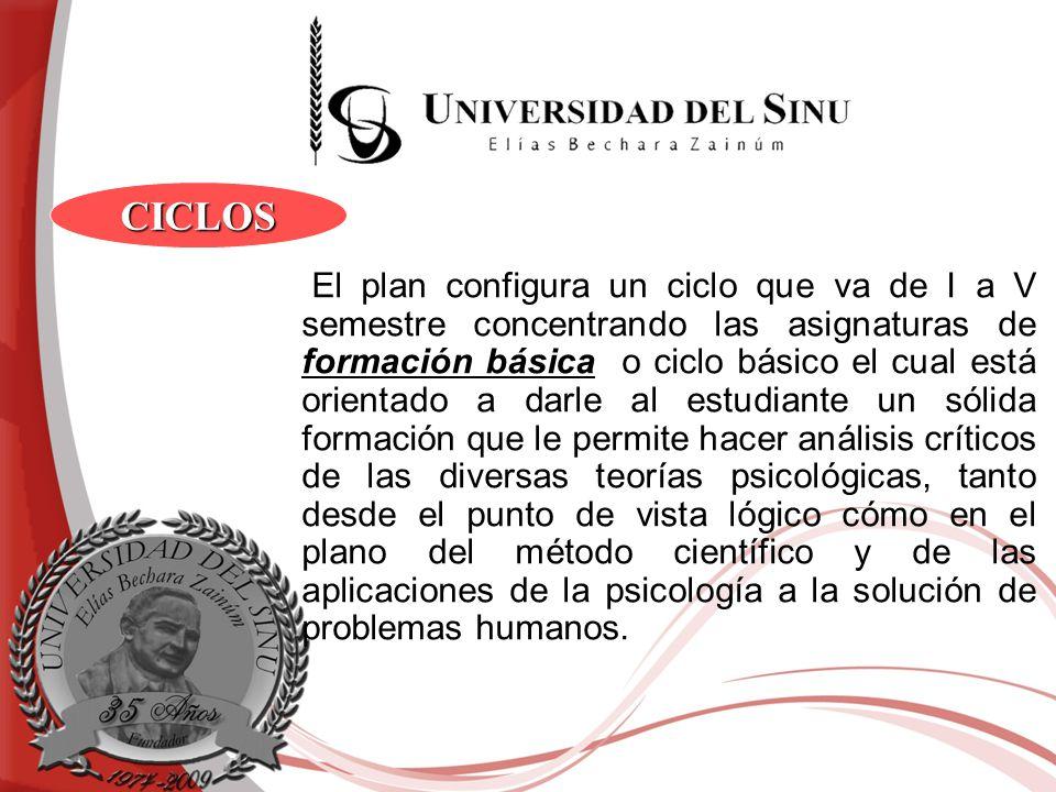 El plan configura un ciclo que va de I a V semestre concentrando las asignaturas de formación básica o ciclo básico el cual está orientado a darle al