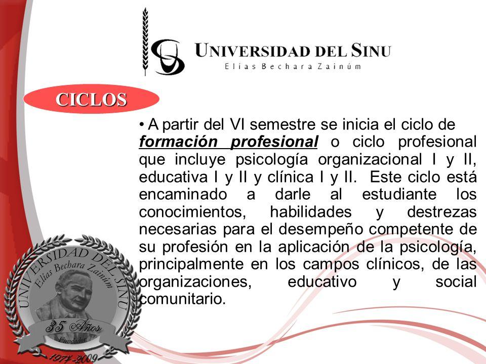 A partir del VI semestre se inicia el ciclo de formación profesional o ciclo profesional que incluye psicología organizacional I y II, educativa I y I