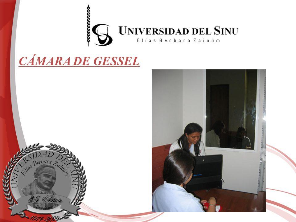 CÁMARA DE GESSEL
