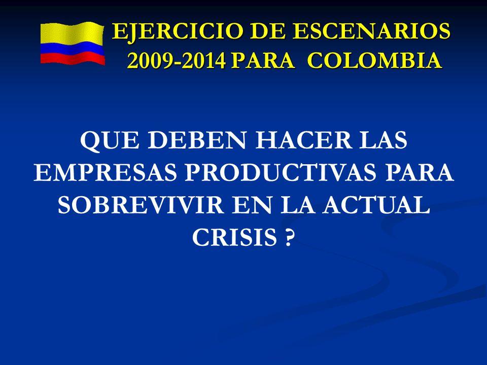 EJERCICIO DE ESCENARIOS 2009-2014 PARA COLOMBIA QUE DEBEN HACER LAS EMPRESAS PRODUCTIVAS PARA SOBREVIVIR EN LA ACTUAL CRISIS ?