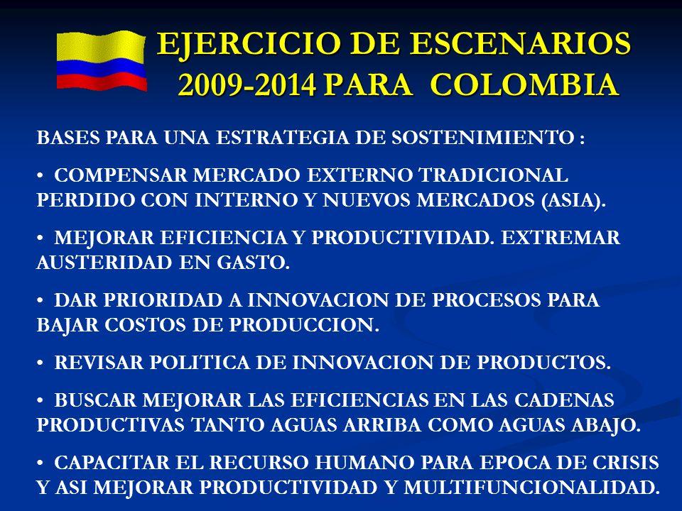 EJERCICIO DE ESCENARIOS 2009-2014 PARA COLOMBIA BASES PARA UNA ESTRATEGIA DE SOSTENIMIENTO : COMPENSAR MERCADO EXTERNO TRADICIONAL PERDIDO CON INTERNO