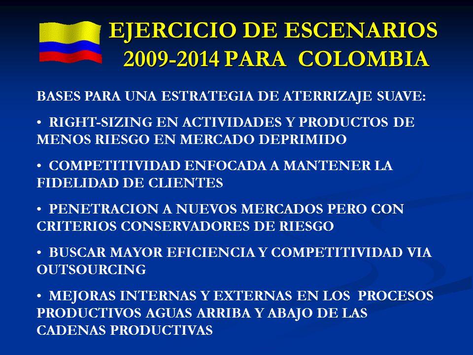 EJERCICIO DE ESCENARIOS 2009-2014 PARA COLOMBIA BASES PARA UNA ESTRATEGIA DE ATERRIZAJE SUAVE: RIGHT-SIZING EN ACTIVIDADES Y PRODUCTOS DE MENOS RIESGO