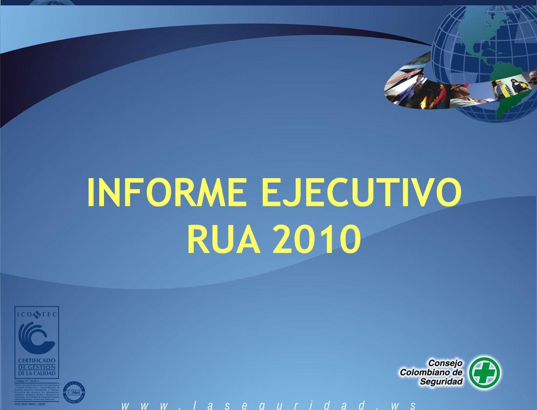 INFORME EJECUTIVO RUA 2010