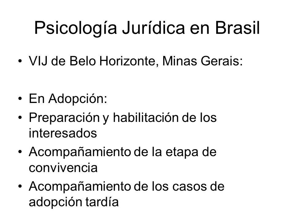 Psicología Jurídica en Brasil VIJ de Belo Horizonte, Minas Gerais: En Adopción: Preparación y habilitación de los interesados Acompañamiento de la etapa de convivencia Acompañamiento de los casos de adopción tardía