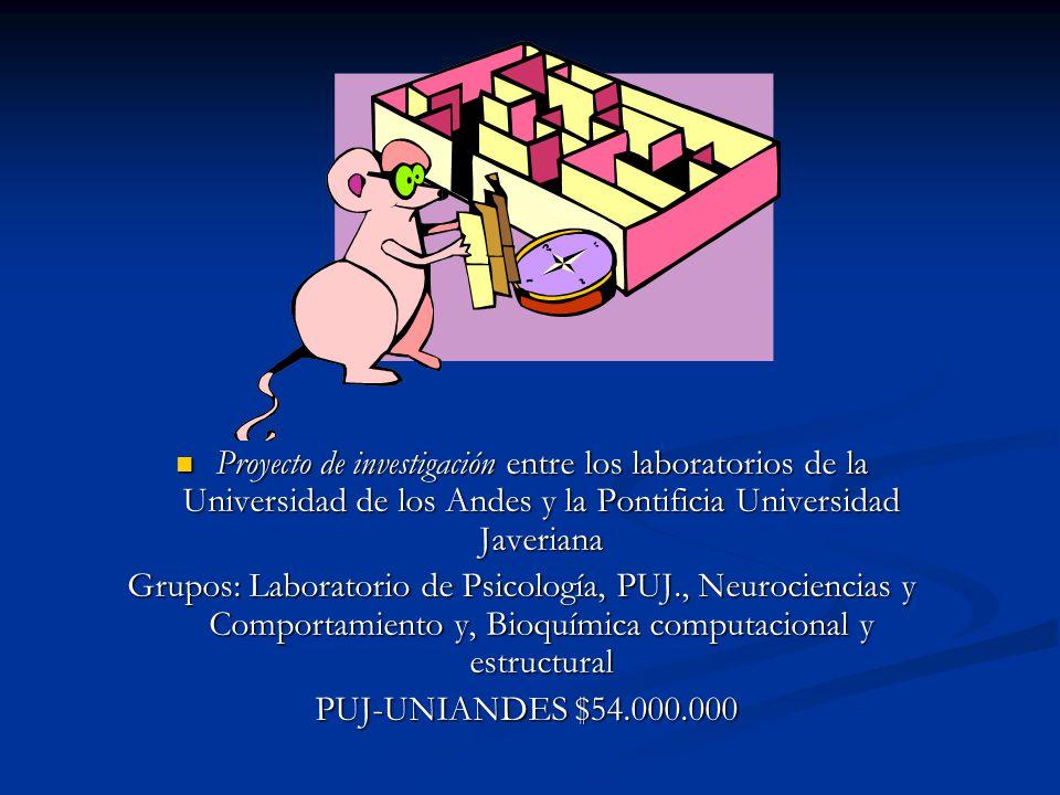 Proyecto de investigación entre los laboratorios de la Universidad de los Andes y la Pontificia Universidad Javeriana Proyecto de investigación entre