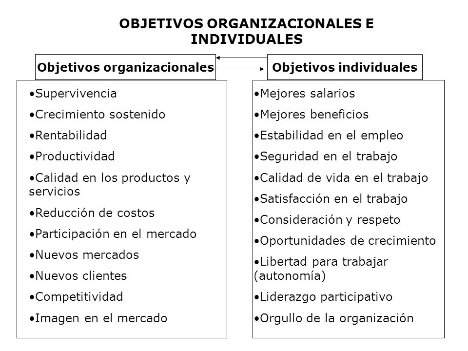 Objetivos organizacionalesObjetivos individuales OBJETIVOS ORGANIZACIONALES E INDIVIDUALES Supervivencia Crecimiento sostenido Rentabilidad Productivi