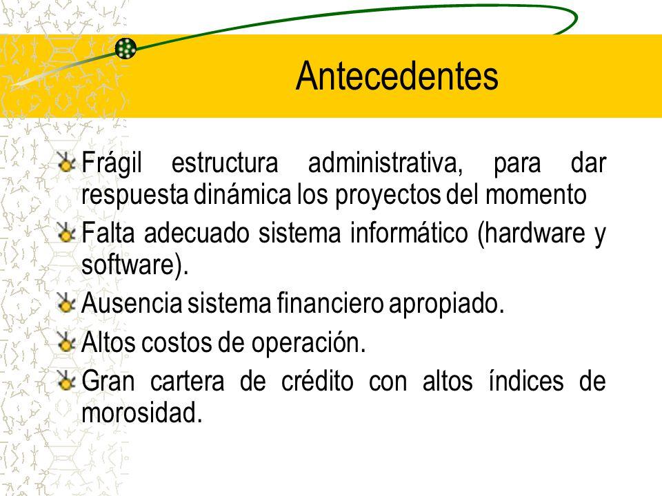 Antecedentes Frágil estructura administrativa, para dar respuesta dinámica los proyectos del momento Falta adecuado sistema informático (hardware y software).
