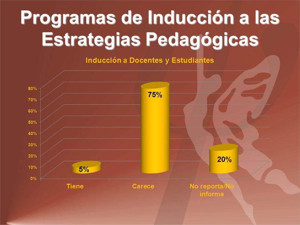 Programas de Inducción a las Estrategias Pedagógicas
