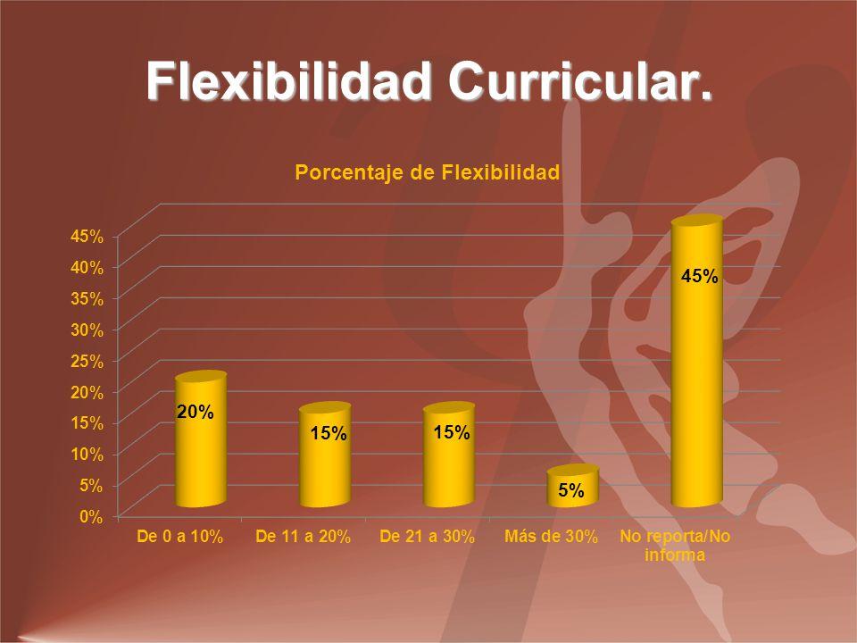 Flexibilidad Curricular.