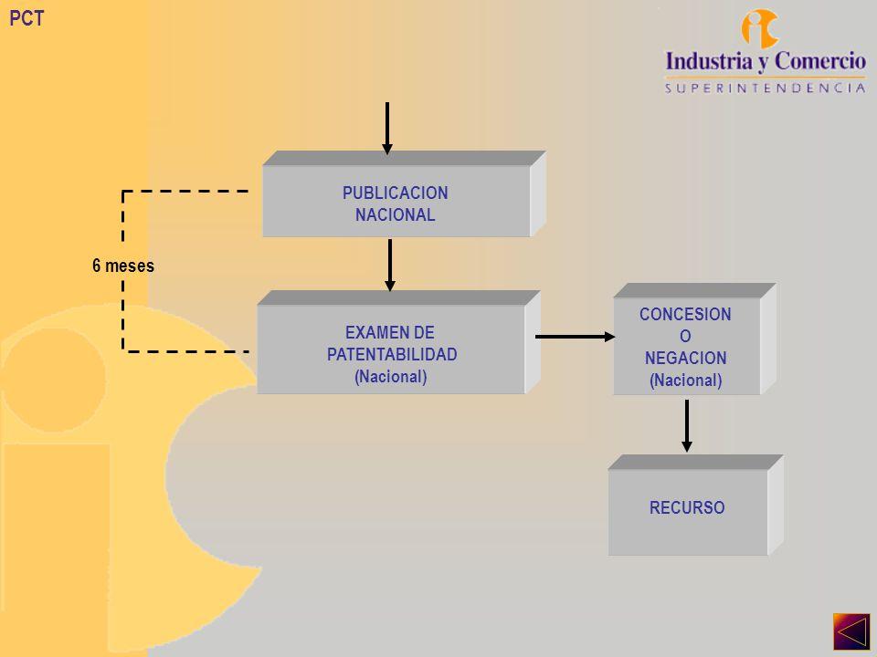 PCT PUBLICACION NACIONAL EXAMEN DE PATENTABILIDAD (Nacional) CONCESION O NEGACION (Nacional) 6 meses RECURSO