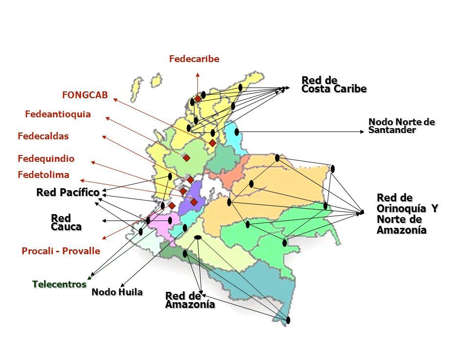 Nodo Norte de Santander Nodo Huila Red de Orinoquía Y Norte de Amazonía Red de Amazonía Red Cauca Red de Costa Caribe Fedeantioquia Fedetolima Fedecal
