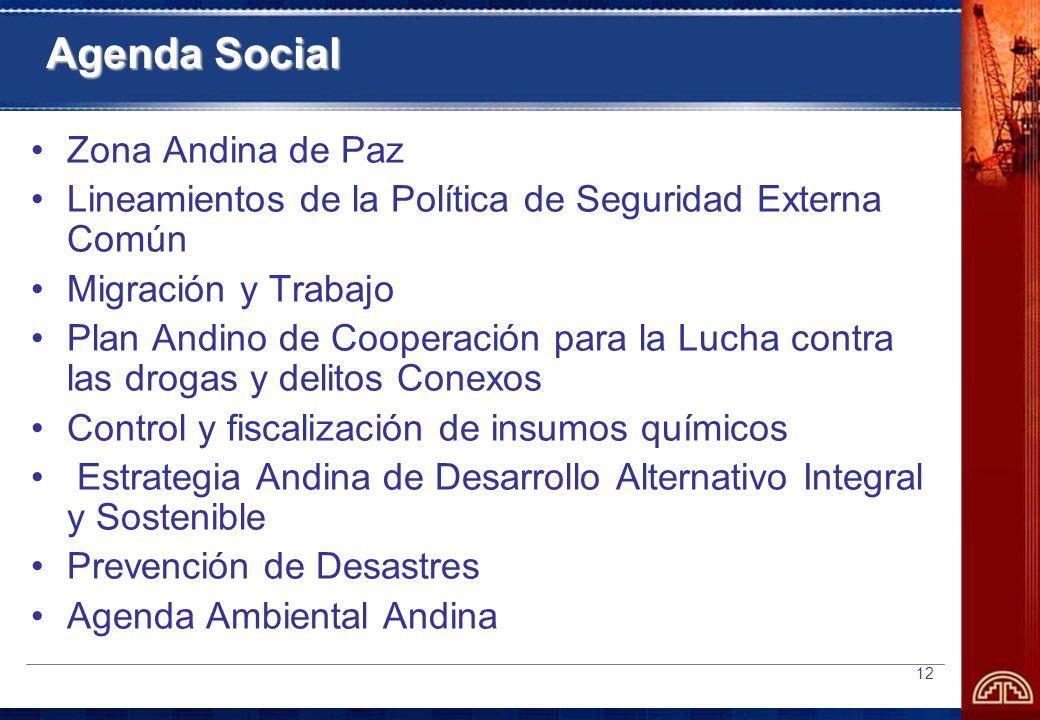 12 Agenda Social Zona Andina de Paz Lineamientos de la Política de Seguridad Externa Común Migración y Trabajo Plan Andino de Cooperación para la Lucha contra las drogas y delitos Conexos Control y fiscalización de insumos químicos Estrategia Andina de Desarrollo Alternativo Integral y Sostenible Prevención de Desastres Agenda Ambiental Andina