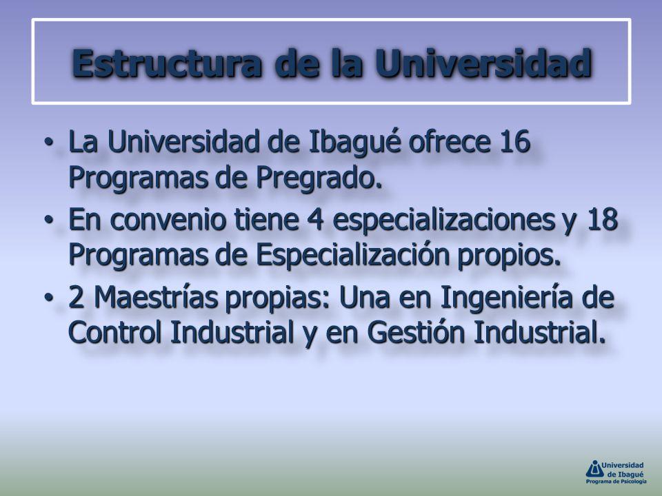 Estructura de la Universidad La Universidad de Ibagué ofrece 16 Programas de Pregrado. La Universidad de Ibagué ofrece 16 Programas de Pregrado. En co