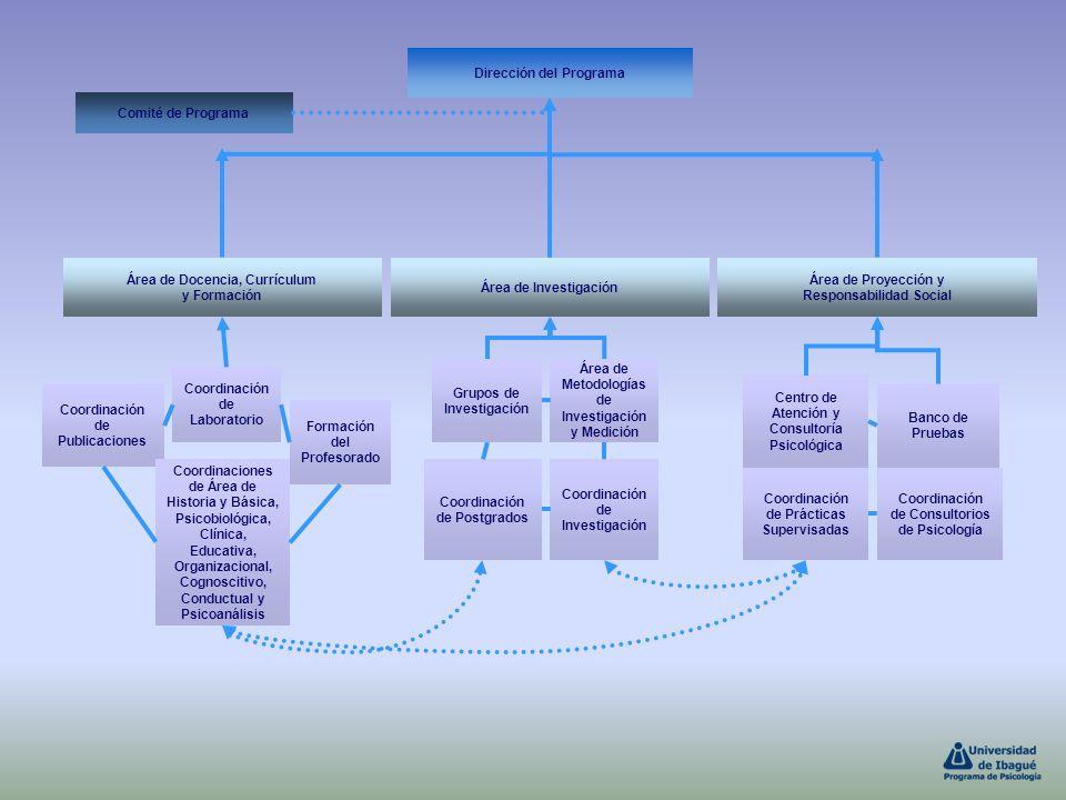Coordinación de Postgrados Dirección del Programa Comité de Programa Área de Docencia, Currículum y Formación Área de Investigación Área de Proyección