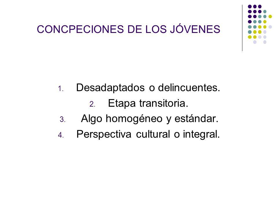 CONCPECIONES DE LOS JÓVENES 1. Desadaptados o delincuentes. 2. Etapa transitoria. 3. Algo homogéneo y estándar. 4. Perspectiva cultural o integral.