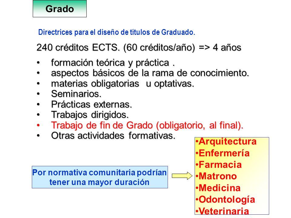 7 Directrices para el diseño de títulos de Graduado. 240 créditos ECTS. (60 créditos/año) => 4 años formación teórica y práctica.formación teórica y p