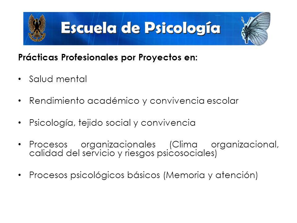 Prácticas Profesionales por Proyectos en: Salud mental Rendimiento académico y convivencia escolar Psicología, tejido social y convivencia Procesos organizacionales (Clima organizacional, calidad del servicio y riesgos psicosociales) Procesos psicológicos básicos (Memoria y atención)