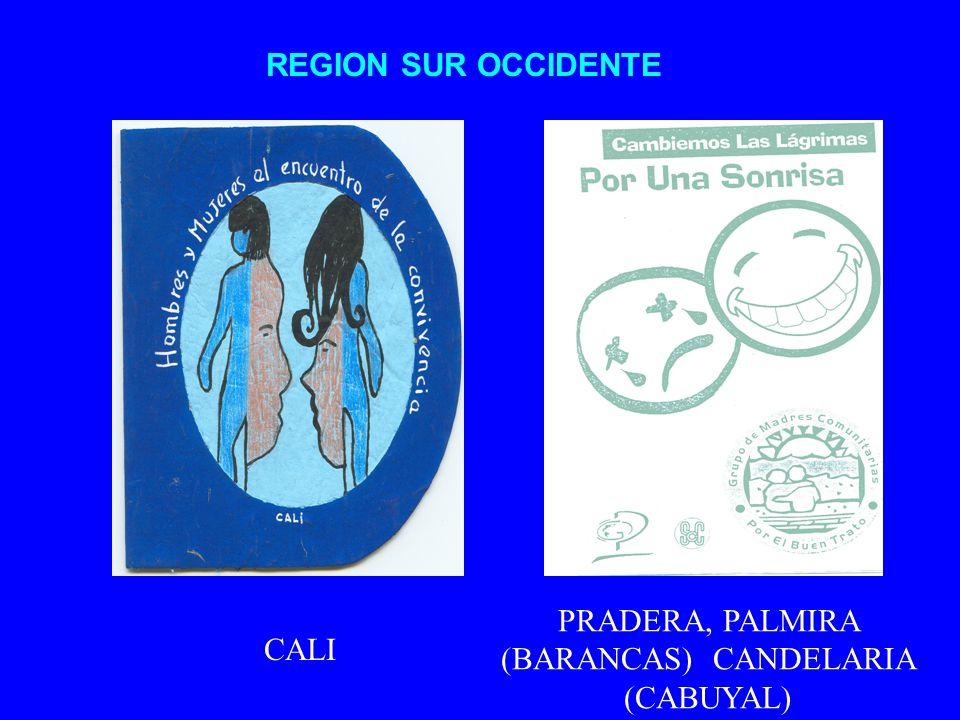 REGION SUR OCCIDENTE CALI PRADERA, PALMIRA (BARANCAS) CANDELARIA (CABUYAL)