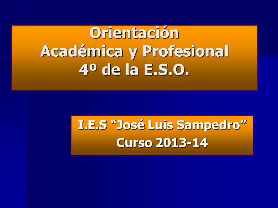Orientación Académica y Profesional 4º de la E.S.O. I.E.S José Luis Sampedro Curso 2013-14