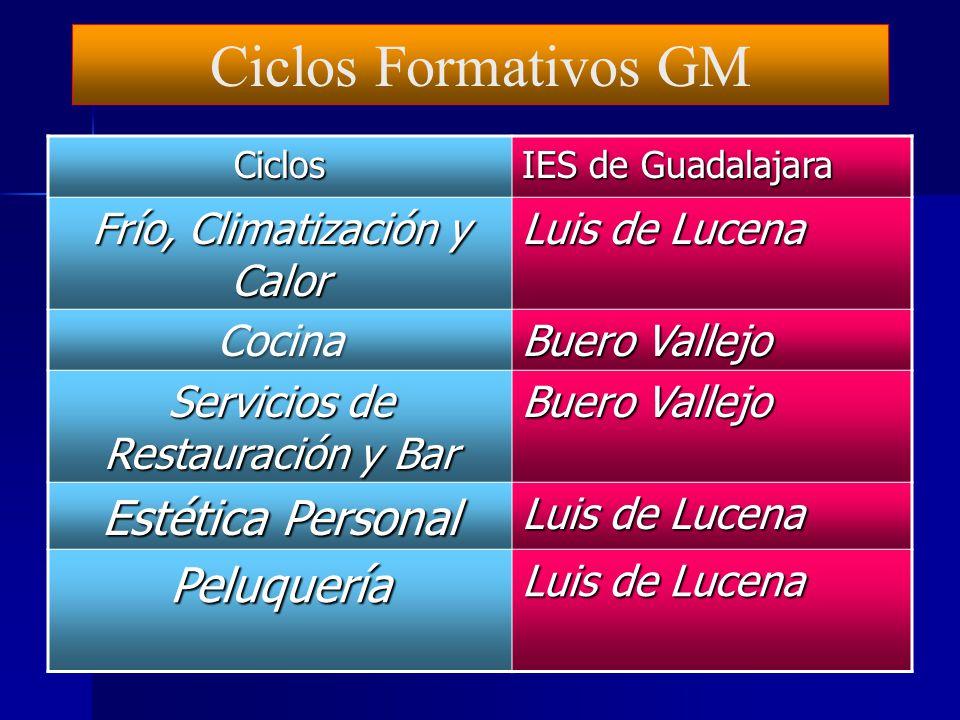 Ciclos Formativos GMCiclos IES de Guadalajara Gestión Administrativa Brianda de Mendoza Comercio Carrocería Electromecánica de vehículos Aguas Vivas M