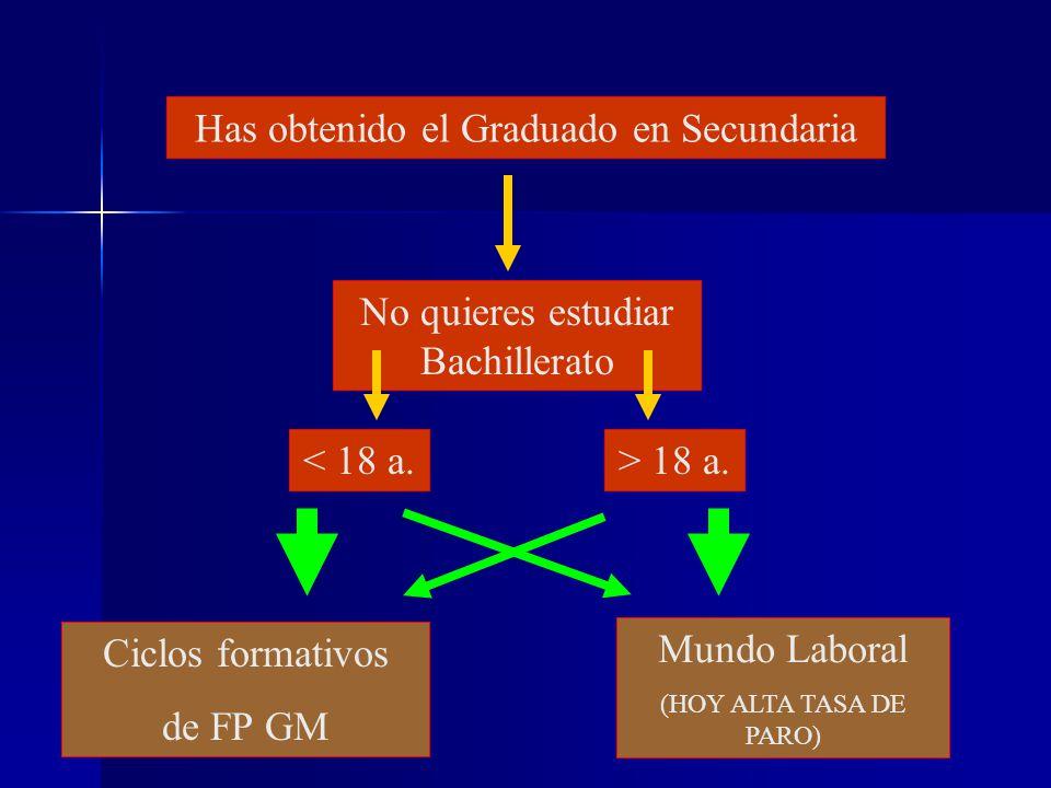 No quieres estudiar Bachillerato Mundo Laboral (HOY ALTA TASA DE PARO) > 18 a.< 18 a.