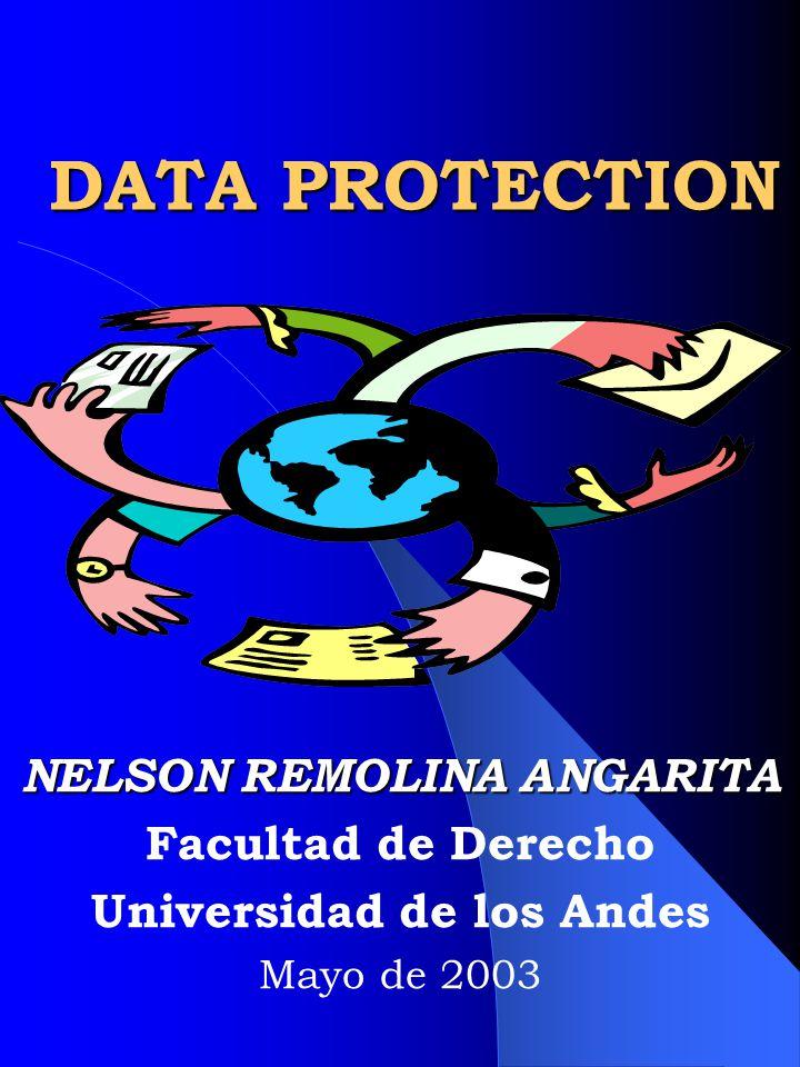 Nelson Remolina Angarita22 Encuesta del Ministerio Japonés de correos y telecomunicaciones de 2000: 93% preocupado acerca de su información utilizada sin autorización 94% preocupación protección intimidad en el contexto digital 83% Necesario existencia legislación respecto del uso y distribución de la información personal