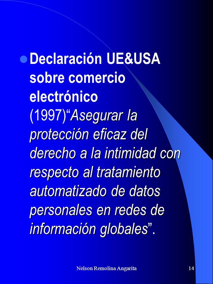 Nelson Remolina Angarita14 Asegurar la protección eficaz del derecho a la intimidad con respecto al tratamiento automatizado de datos personales en re