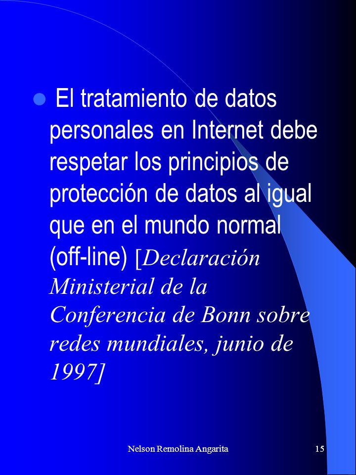 Nelson Remolina Angarita15 El tratamiento de datos personales en Internet debe respetar los principios de protección de datos al igual que en el mundo