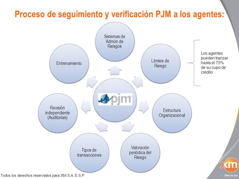 Todos los derechos reservados para XM S.A. E.S.P Proceso de seguimiento y verificación PJM a los agentes: Sistemas de Admón de Riesgos Límites de Ries