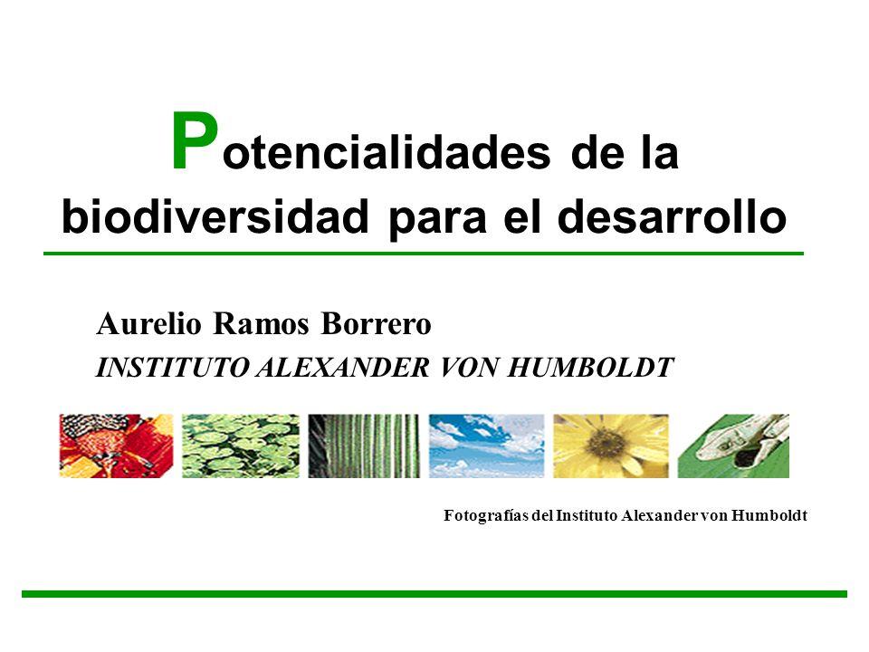 P otencialidades de la biodiversidad para el desarrollo Aurelio Ramos Borrero INSTITUTO ALEXANDER VON HUMBOLDT Fotografías del Instituto Alexander von
