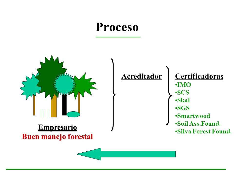 Proceso Empresario Buen manejo forestal Certificadoras IMO SCS Skal SGS Smartwood Soil Ass.Found. Silva Forest Found. Acreditador