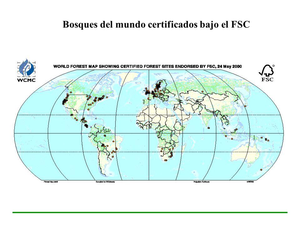 Bosques del mundo certificados bajo el FSC
