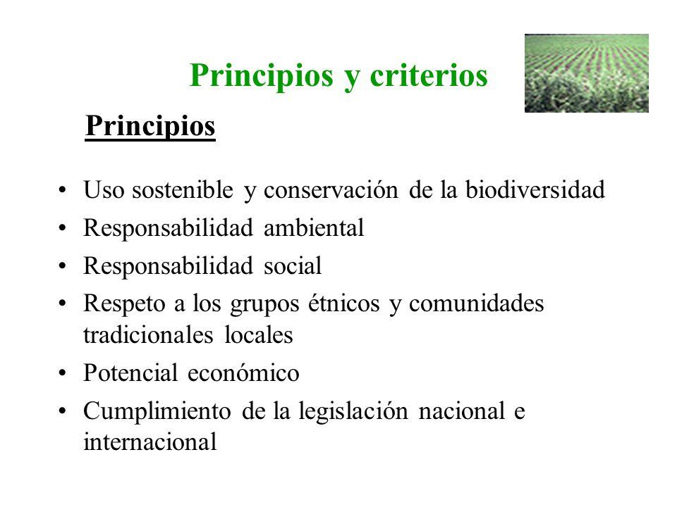 Principios y criterios Uso sostenible y conservación de la biodiversidad Responsabilidad ambiental Responsabilidad social Respeto a los grupos étnicos