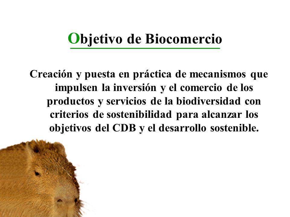 O bjetivo de Biocomercio Creación y puesta en práctica de mecanismos que impulsen la inversión y el comercio de los productos y servicios de la biodiv