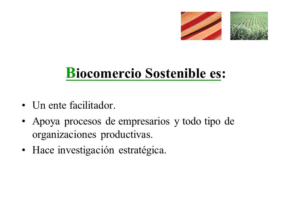 B iocomercio Sostenible es: Un ente facilitador. Apoya procesos de empresarios y todo tipo de organizaciones productivas. Hace investigación estratégi