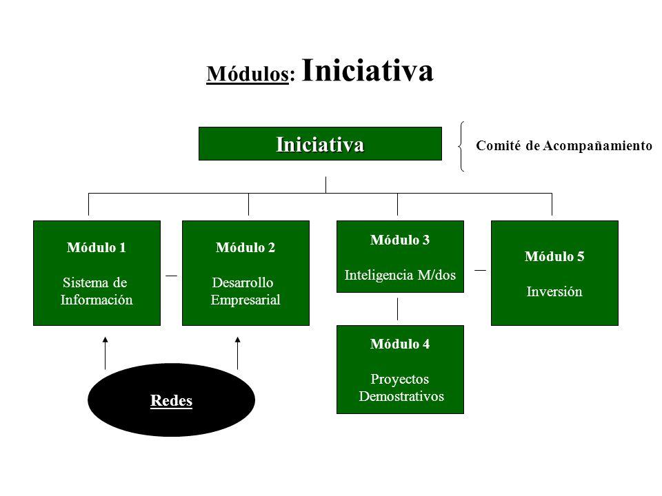 Módulos: Iniciativa Iniciativa Comité de Acompañamiento Módulo 2 Desarrollo Empresarial Módulo 3 Inteligencia M/dos Módulo 5 Inversión Redes Módulo 1