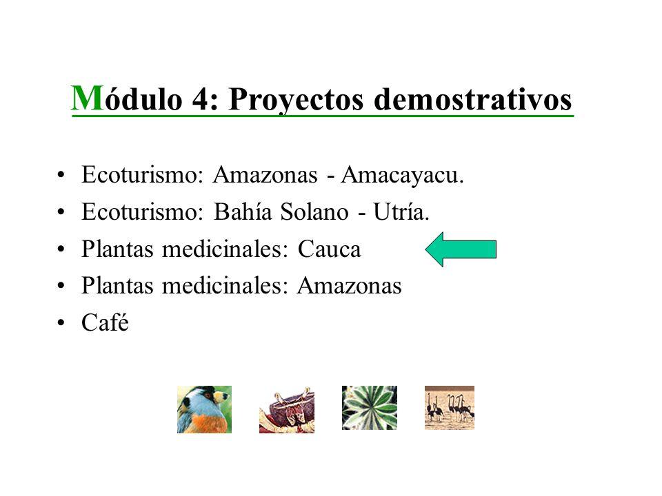 Ecoturismo: Amazonas - Amacayacu. Ecoturismo: Bahía Solano - Utría. Plantas medicinales: Cauca Plantas medicinales: Amazonas Café M ódulo 4: Proyectos