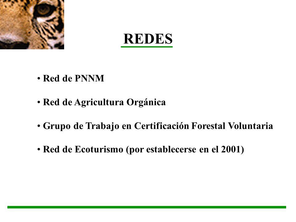 REDES Red de PNNM Red de Agricultura Orgánica Grupo de Trabajo en Certificación Forestal Voluntaria Red de Ecoturismo (por establecerse en el 2001)