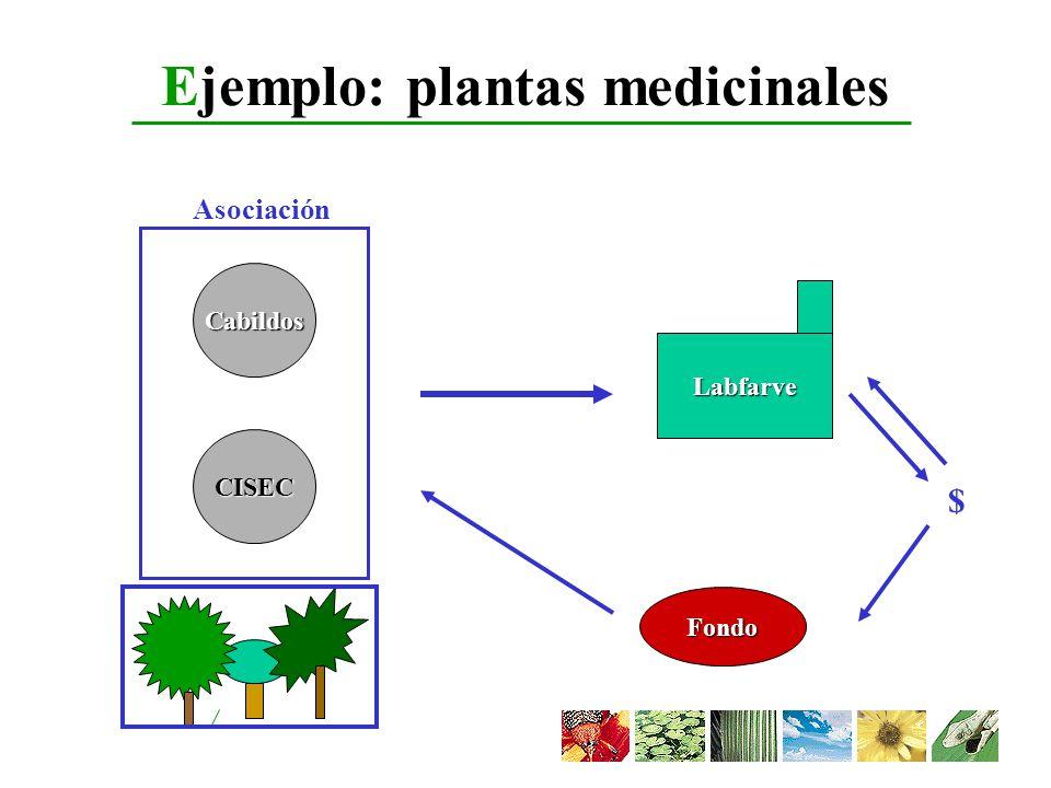 Ejemplo: plantas medicinales Labfarve Cabildos CISEC Asociación $ Fondo