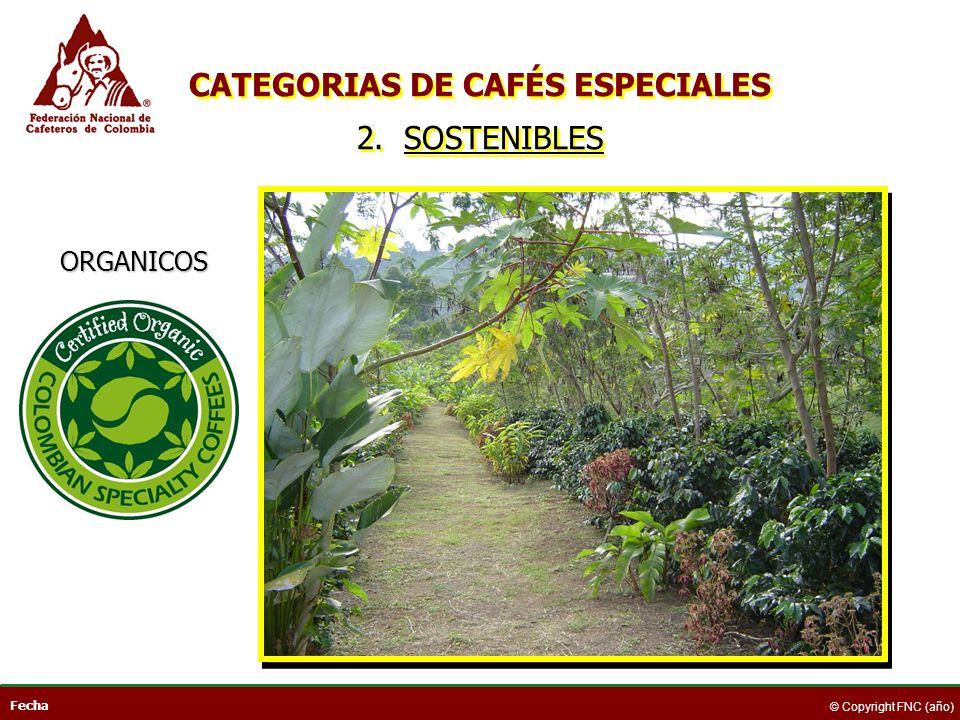 Fecha © Copyright FNC (año) ORGANICOS CATEGORIAS DE CAFÉS ESPECIALES 2. SOSTENIBLES