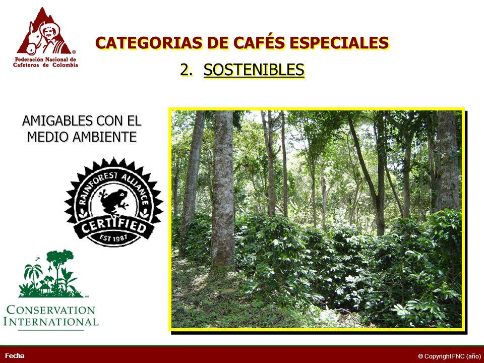 Fecha © Copyright FNC (año) AMIGABLES CON EL MEDIO AMBIENTE CATEGORIAS DE CAFÉS ESPECIALES 2. SOSTENIBLES