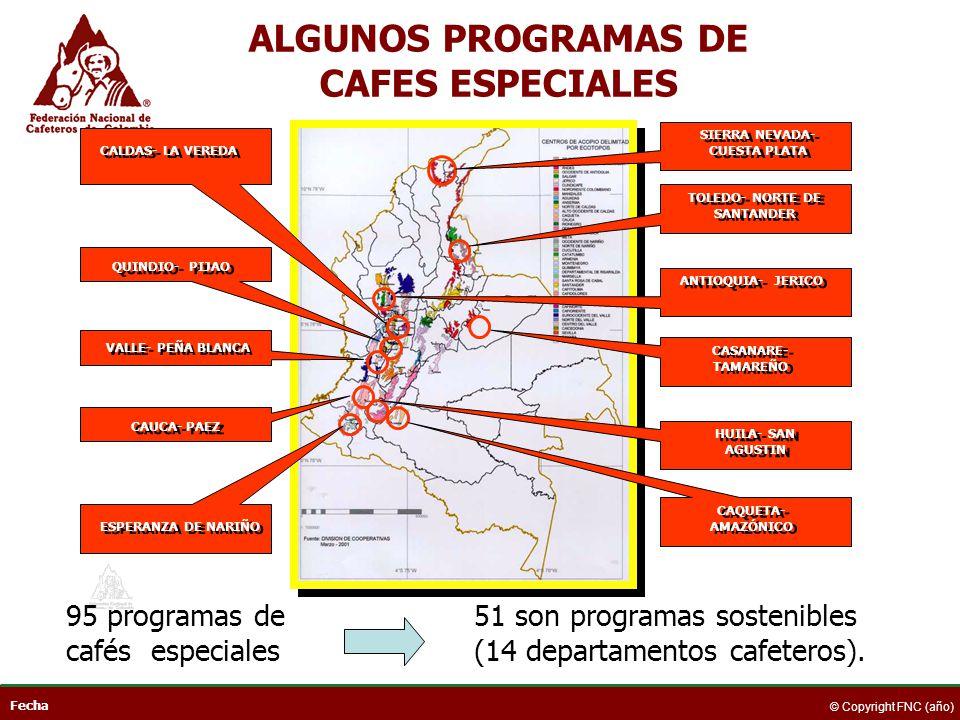 Fecha © Copyright FNC (año) CAUCA- PAEZ VALLE- PEÑA BLANCA QUINDIO- PIJAO CAQUETA- AMAZÓNICO HUILA- SAN AGUSTIN CASANARE- TAMAREÑO TOLEDO- NORTE DE SA