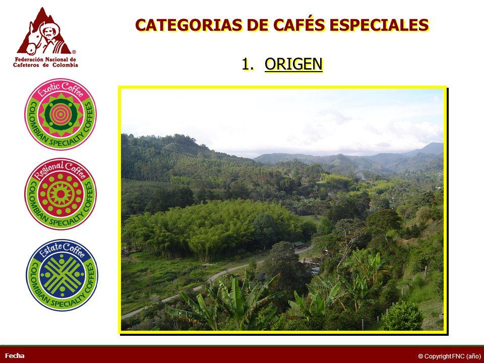Fecha © Copyright FNC (año) CAFÉS DE ORIGEN