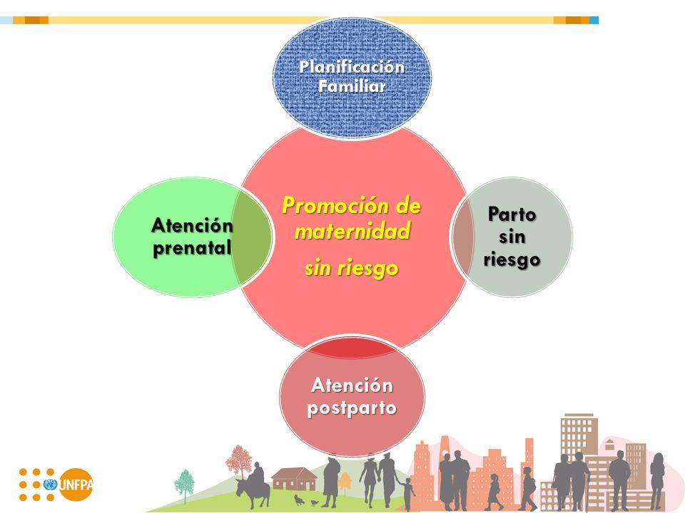 Promoción de maternidad sin riesgo Planificación Familiar Parto sin riesgo Atención postparto Atención prenatal