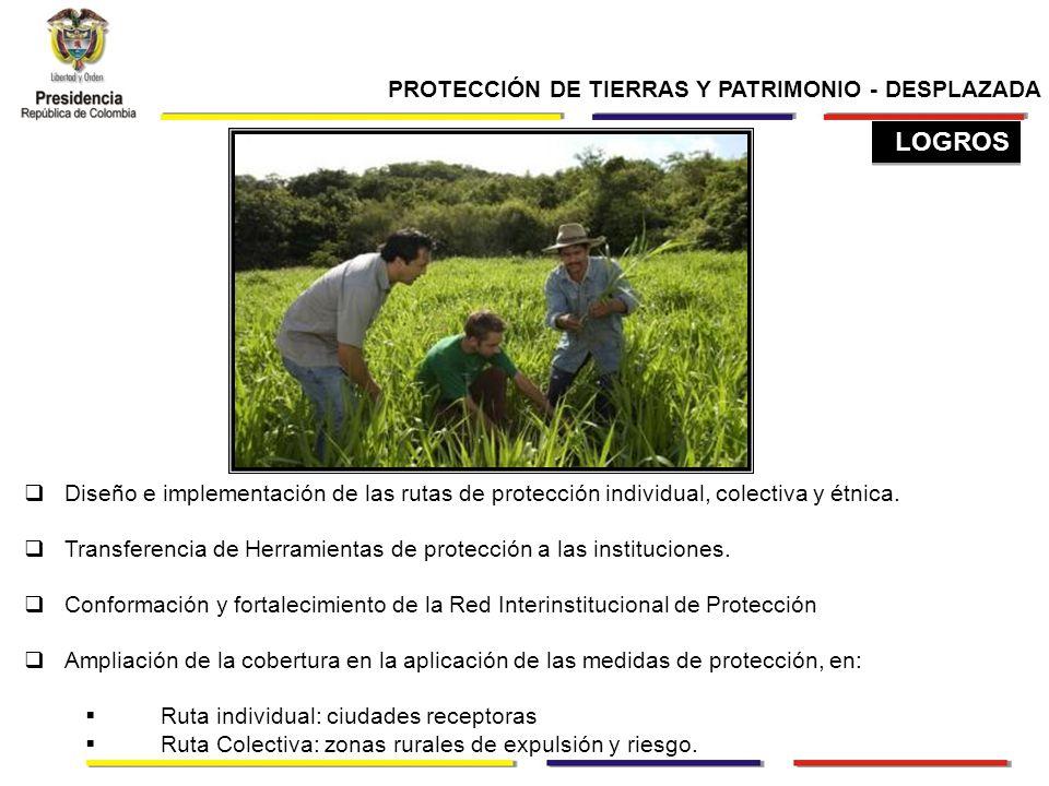 PROTECCIÓN DE TIERRAS Y PATRIMONIO - DESPLAZADA Diseño e implementación de las rutas de protección individual, colectiva y étnica.