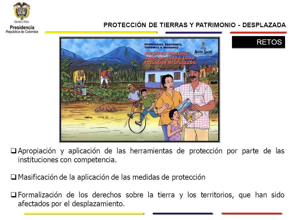 Apropiación y aplicación de las herramientas de protección por parte de las instituciones con competencia.