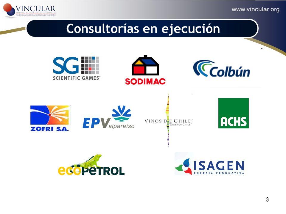 www.vincular.org 3 Consultorías en ejecución