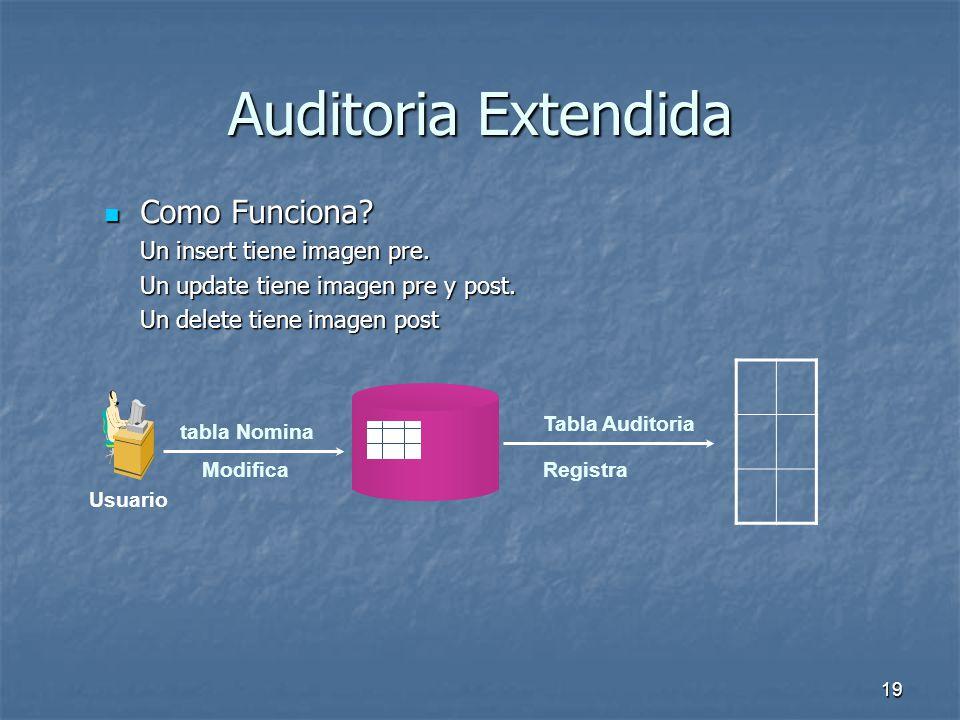 18 Auditoria Extendida La puedo Implementar? Como? La puedo Implementar? Como? Implementando Triggers sobre los objetos. Database DBA Tabla o Vista Tr