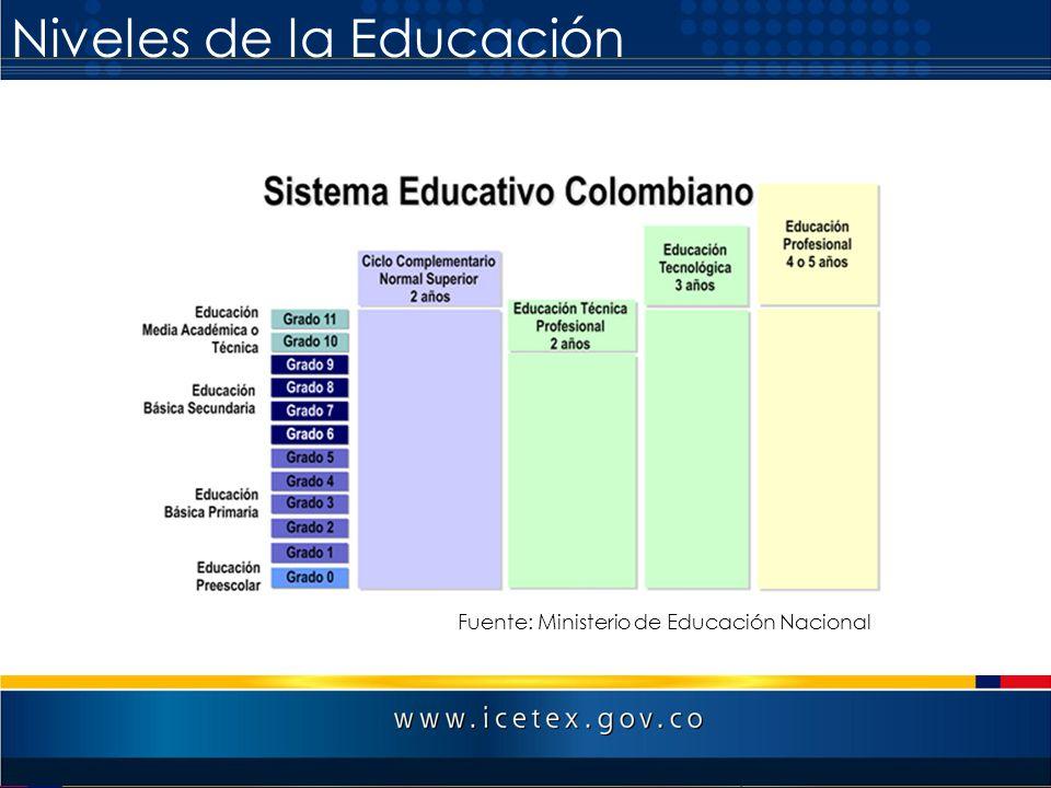 Fuente: Ministerio de Educación Nacional Niveles de la Educación